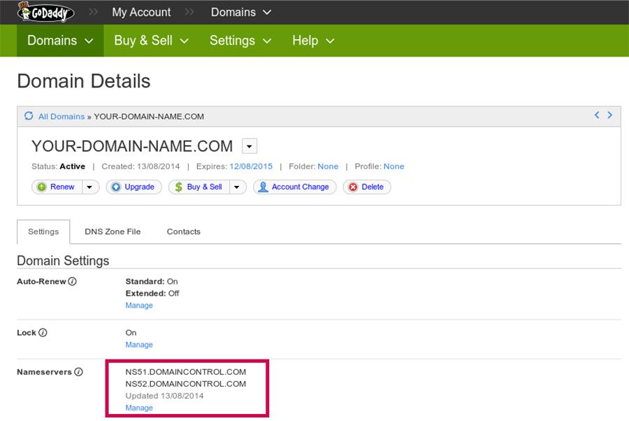 Domain Registration Details
